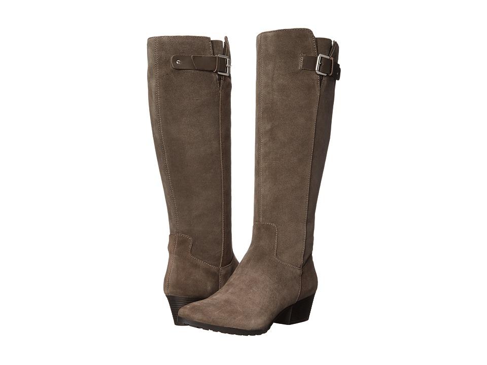 Bandolino - Tadao (Dark Taupe/Dark Taupe Suede) Women's Shoes