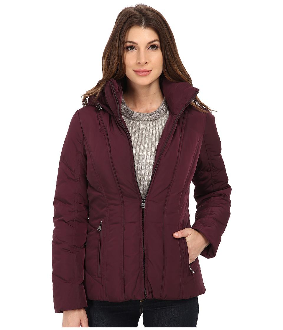 Calvin Klein Short Down Coat w/ Untrimmed Hood (Black/Plum) Women