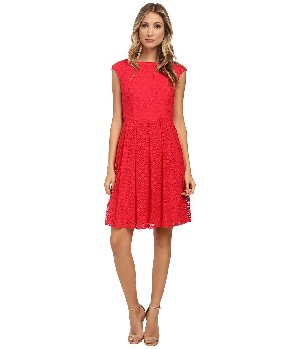 London Times - Cap Sleeve Lace Full Skirt (Berry) Women's Dress