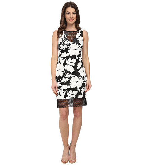 julia jordan - Rio Floral Dress (Black/White/Black) Women's Dress