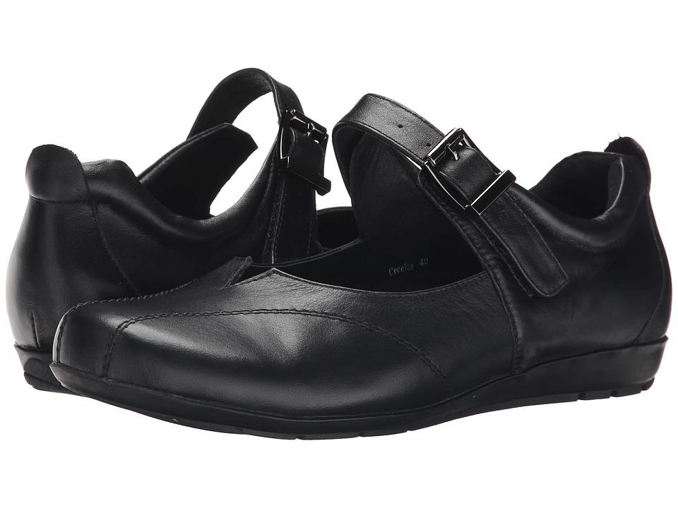 Image of Alivio - Cecelia (Black) Women's Shoes