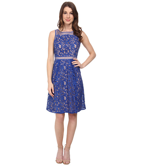 Adrianna Papell - Splice Seam Detail Lace Fit and Flare Dress (Cornflower) Women