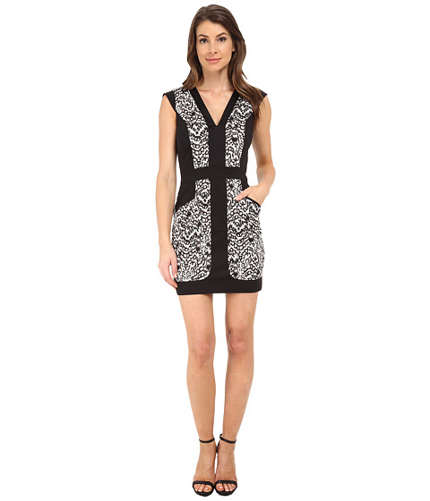 French Connection - Leopard Moth Cotton Dress 71EGP (Grey Otter Multi) Women's Dress