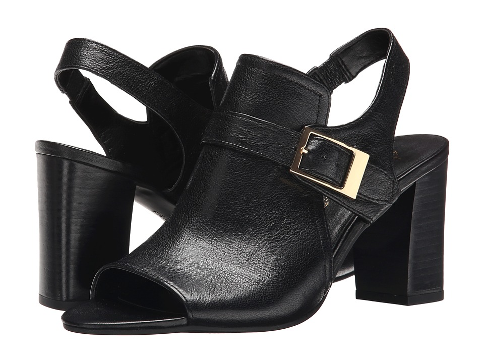 Franco Sarto - Gabba (Black) Women's Shoes