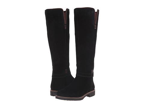 Franco Sarto - Corianne (Black Suede) Women's Shoes