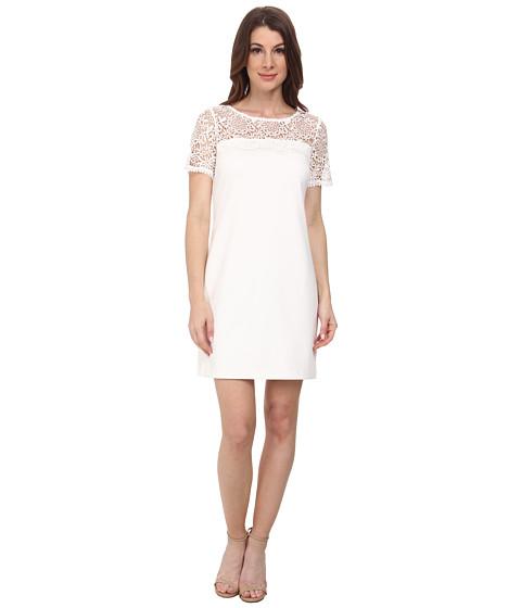 Jessica Simpson - Short Sleeve Lace Knit Combo Dress (Ivory) Women