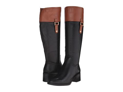 Franco Sarto - Lizbeth (Black/Brown) Women's Shoes