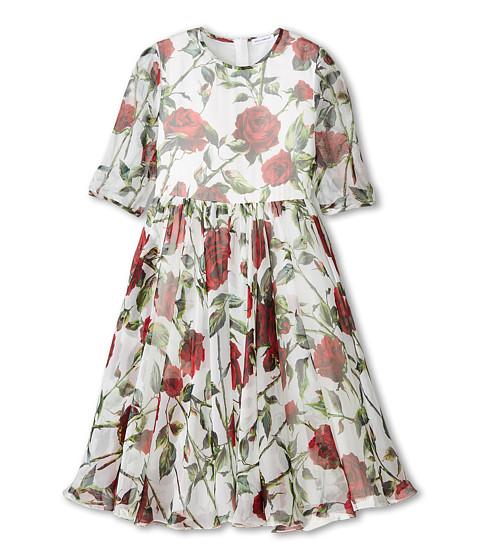 Dolce & Gabbana - Ceremony Rose Print Chiffon Dress (Big Kids) (White/Rose Print) Women