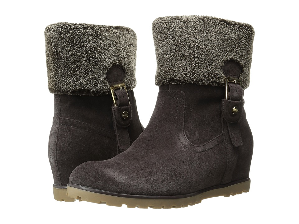 Tommy Hilfiger Soffia (Dark Brown Suede) Women