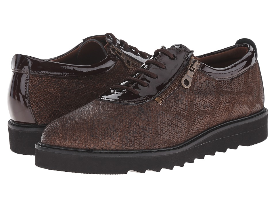 Helle Comfort - Damiana (Brown Python) Women's Lace up casual Shoes