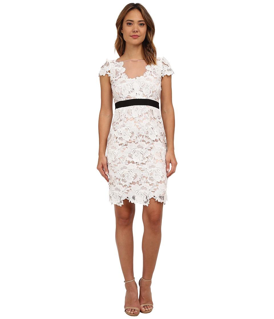 Adrianna Papell - Short Sleeve 3D Guipure Cocktail Dress (Ivory) Women's Dress