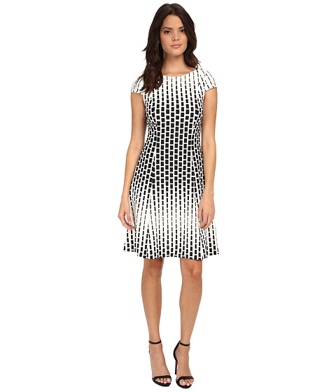 Tahari by ASL - Printed Dress (Ivory/Black) Women