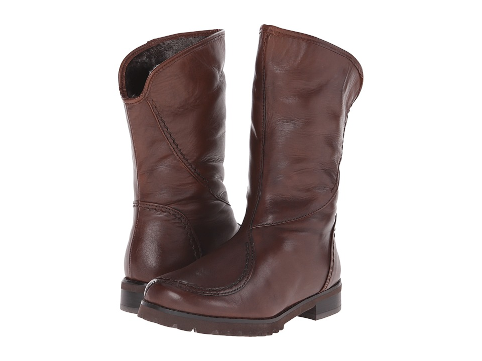 Spring Step Inverno (Brown) Women