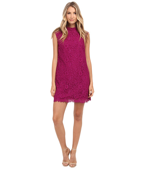 Donna Morgan - Sleeveless Lace Shift Dress (Violet) Women