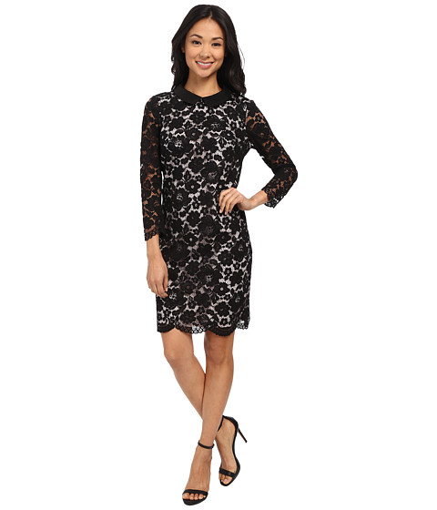 Ted Baker - Scallop Hem Lace Dress (Black) Women's Dress