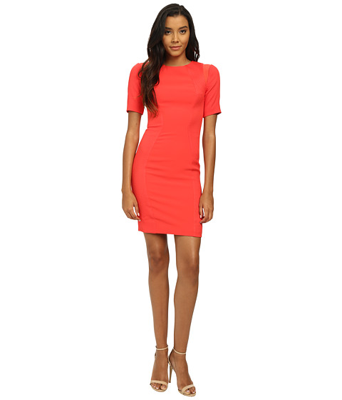 Ted Baker - Mesh Panel Bodycon Dress (Bright Orange) Women's Dress