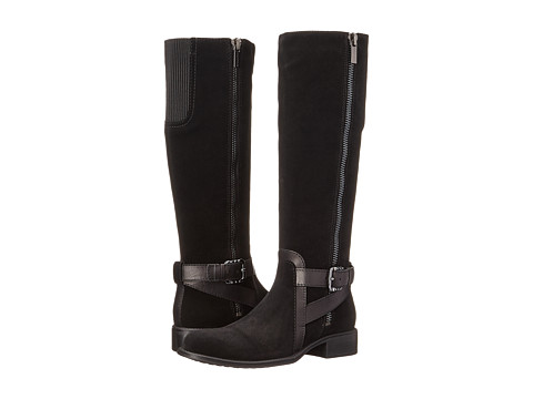 Aquatalia - Uriale (Black Suede/Calf) Women