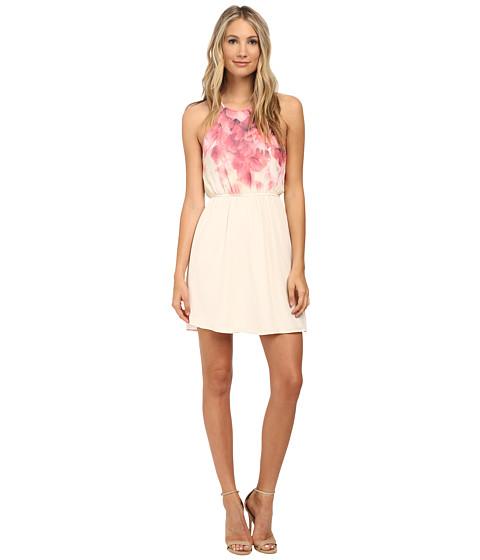 Gabriella Rocha - Anna Floral Print Spaghetti Strap Dress (Ivory/Pink) Women's Dress