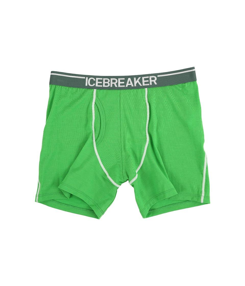 Icebreaker - Anatomica Boxers w/ Fly (Balsam/Canoe) Men's Underwear