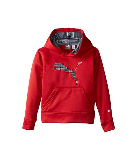 Puma Kids - Big Cat Hoodie (Little Kids) (Scooter) Boy's Sweatshirt