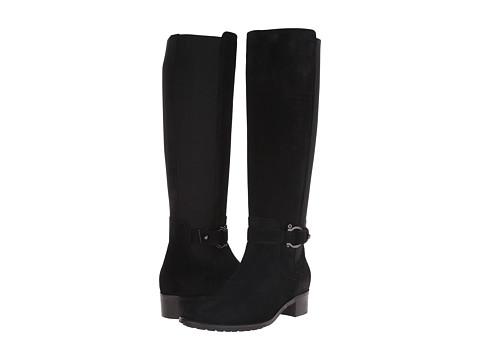 Aquatalia - Odina (Black Suede) Women's Zip Boots