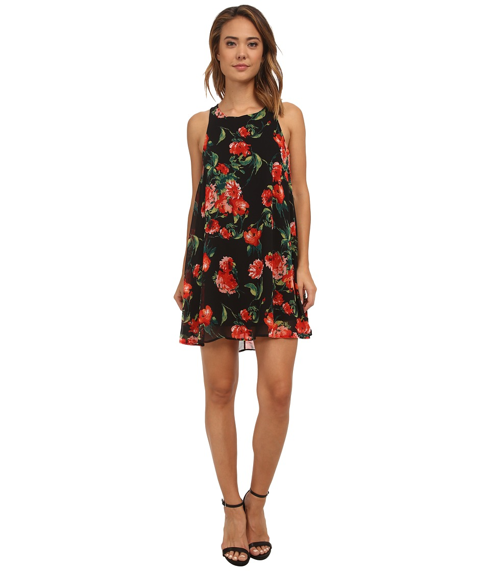 Brigitte Bailey - Rose Floral Swing Dress (Black/Red) Women
