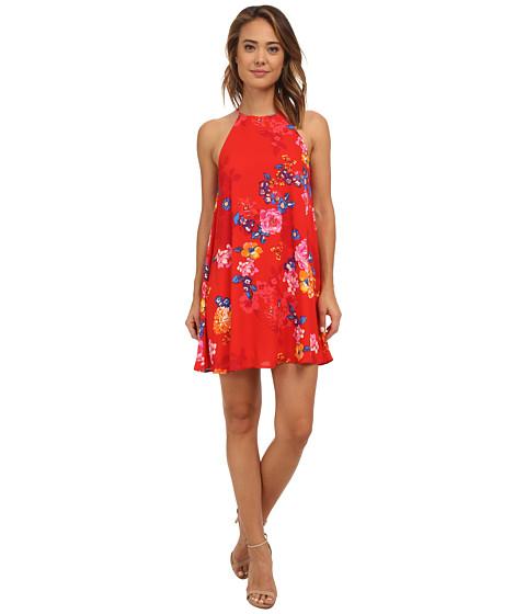 Brigitte Bailey - Floral Shift Dress (Red) Women