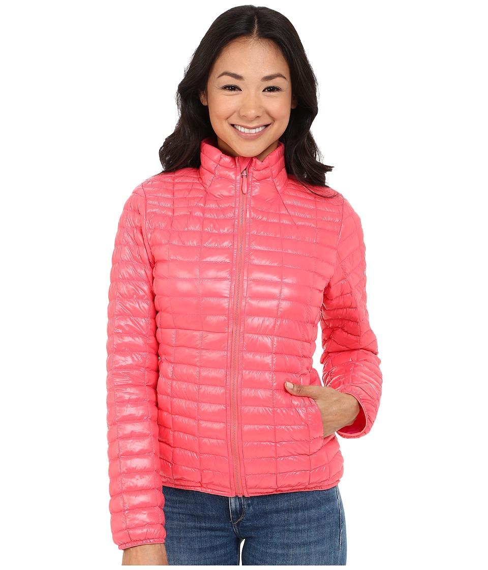 adidas Outdoor - All Outdoor Flyloft Jacket (Super Blush) Women's Coat