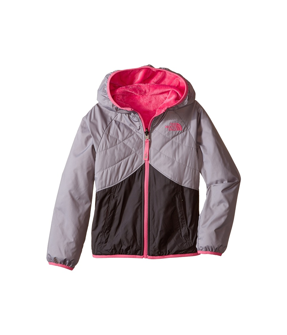 The North Face Kids - Reversible Breezeway Wind Jacket (Little Kids/Big Kids) (Metallic Silver) Girl's Coat