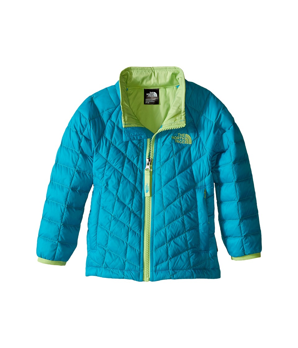 The North Face Kids - Thermoball Jacket (Toddler) (Bluebird) Girl's Coat