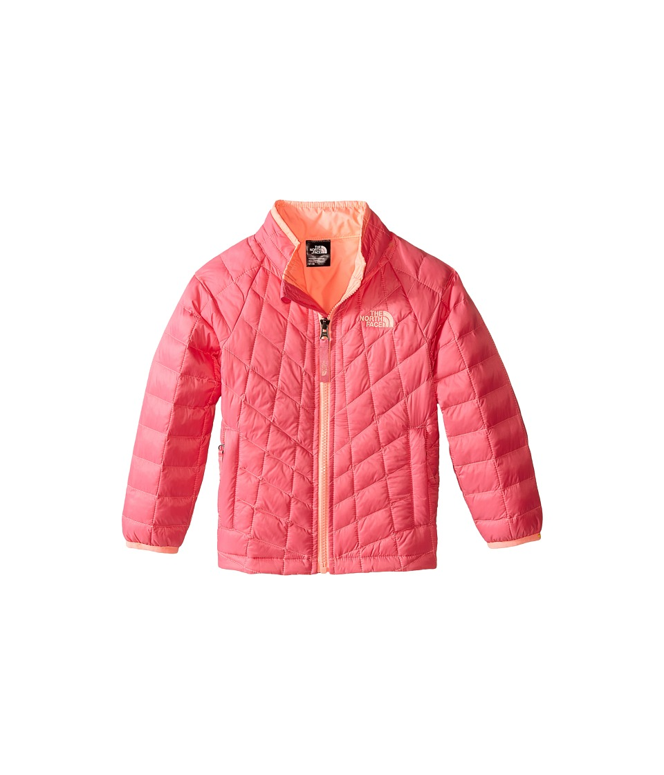 The North Face Kids - Thermoball Jacket (Toddler) (Cha Cha Pink) Girl's Coat