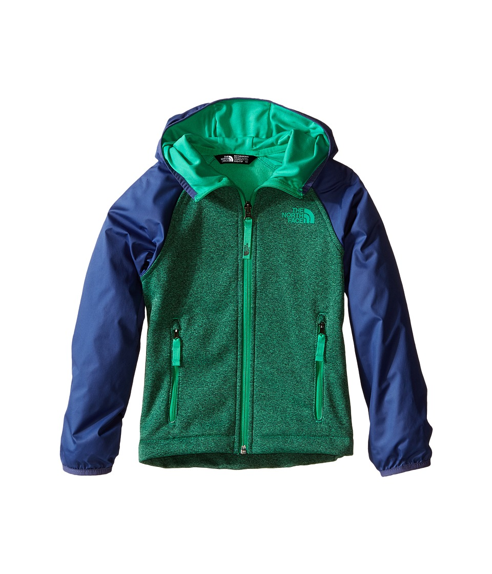 The North Face Kids - Canyonlands Track Hoodie (Little Kids/Big Kids) (Blarney Green Heather) Boy's Sweatshirt