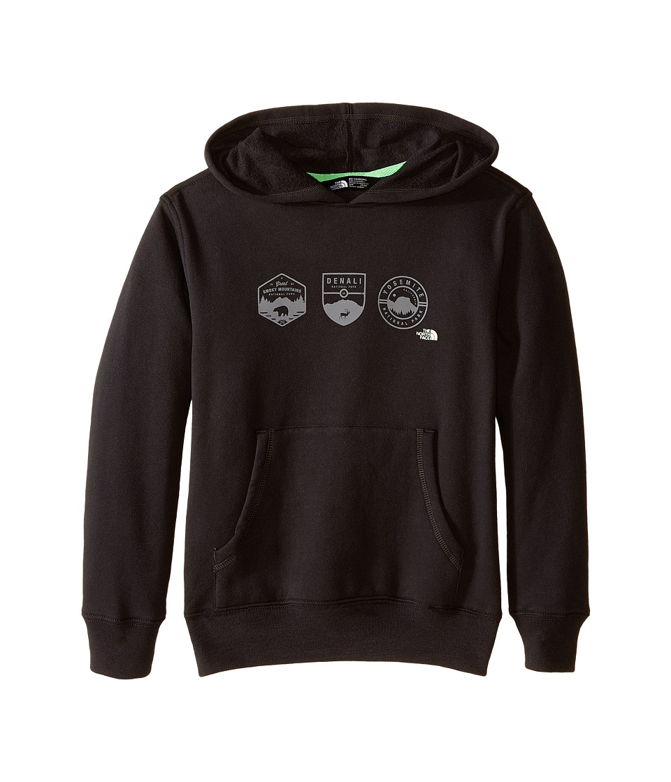 The North Face Kids - Logowear Pullover Hoodie (Little Kids/Big Kids) (Asphalt Grey/Glow in the Dark) Boy's Sweatshirt