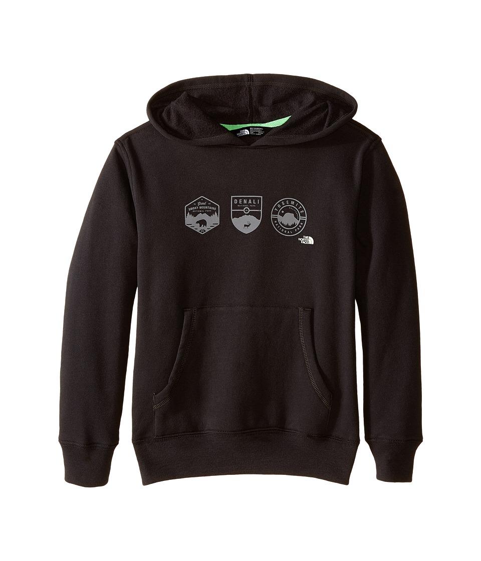 The North Face Kids - Logowear Pullover Hoodie (Little Kids/Big Kids) (Asphalt Grey/Glow in the Dark) Boy's Sweatshirt