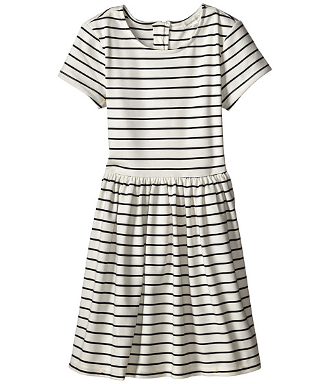 Pumpkin Patch Kids - Dance Academy Striped Ponti Skater Dress (Little Kids/Big Kids) (Black Ink) Girl