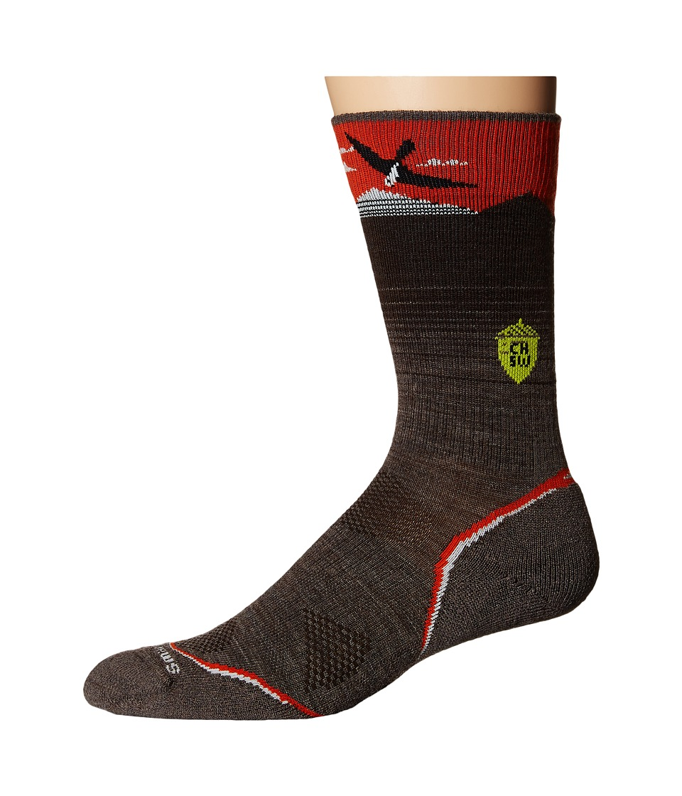 Smartwool - PhD Outdoor Light Crew: Charley Harper National Park Poster Bird on a Mountain (Taupe) Men's Crew Cut Socks Shoes