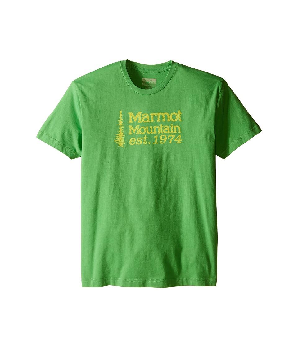 Marmot Kids - 74 Tee Short Sleeve (Little Kids/Big Kids) (Bright Grass) Boy