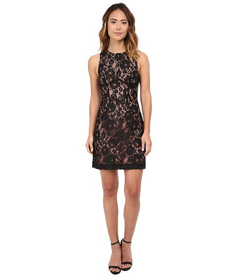 French Connection - Heartbreaker Lace Dress (Black/Nude) Women's Dress