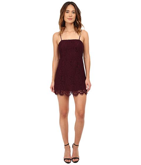Chaser - Vintage Lace Party Mini Dress (Cabernet) Women