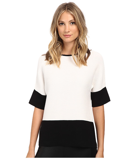 Calvin Klein - Short Sleeve Ribbed Sweater (Soft White) Women's Sweater