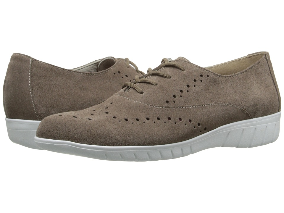 Munro - Wellesley (Almond Suede) Women's Lace up casual Shoes
