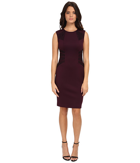 Calvin Klein - Sheath Dress with Lace Inserts (Aubergine) Women