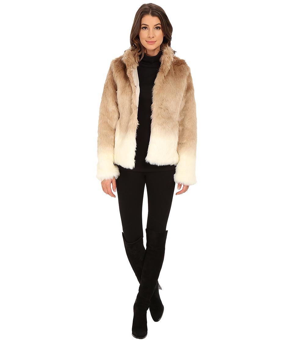 Sanctuary - Fur Chubby Jacket (Ombre Praline) Women