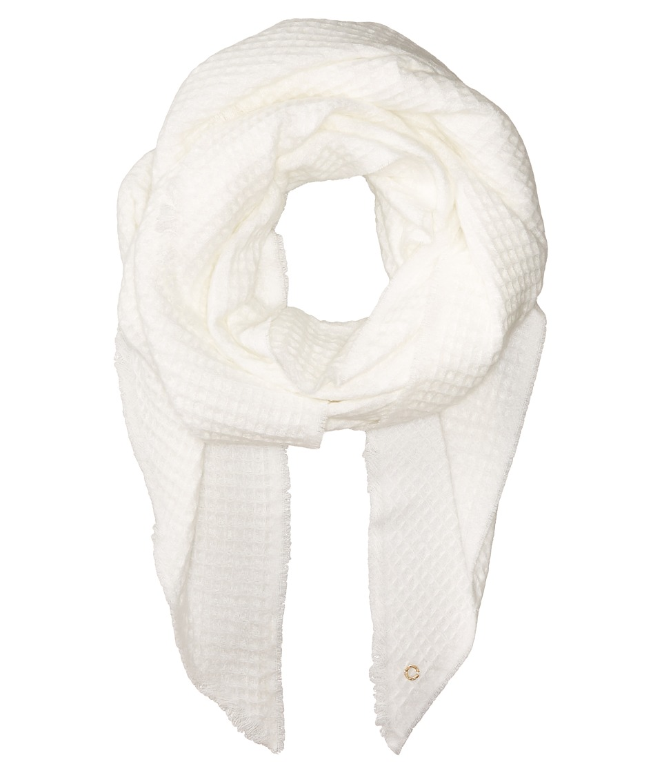 Calvin Klein - Textured Woven Scarf (Cr me) Scarves