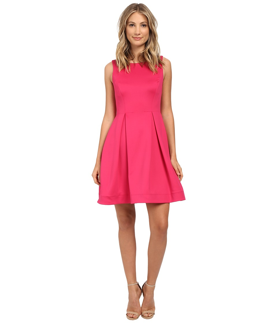 Calvin Klein - Fit Flare Dress (Winter Rose) Women's Dress