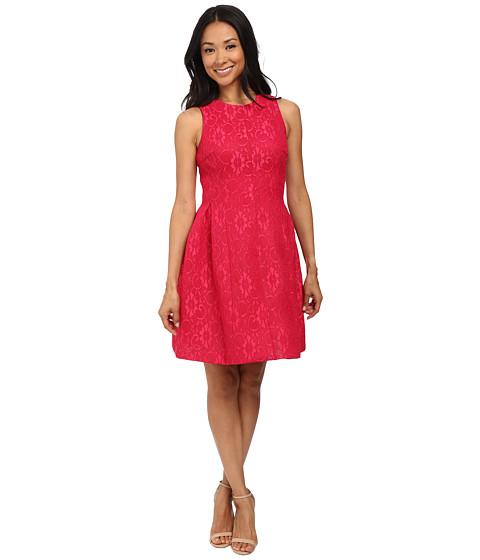 Calvin Klein - Lace Fit Flare Dress (Winter Rose) Women's Dress