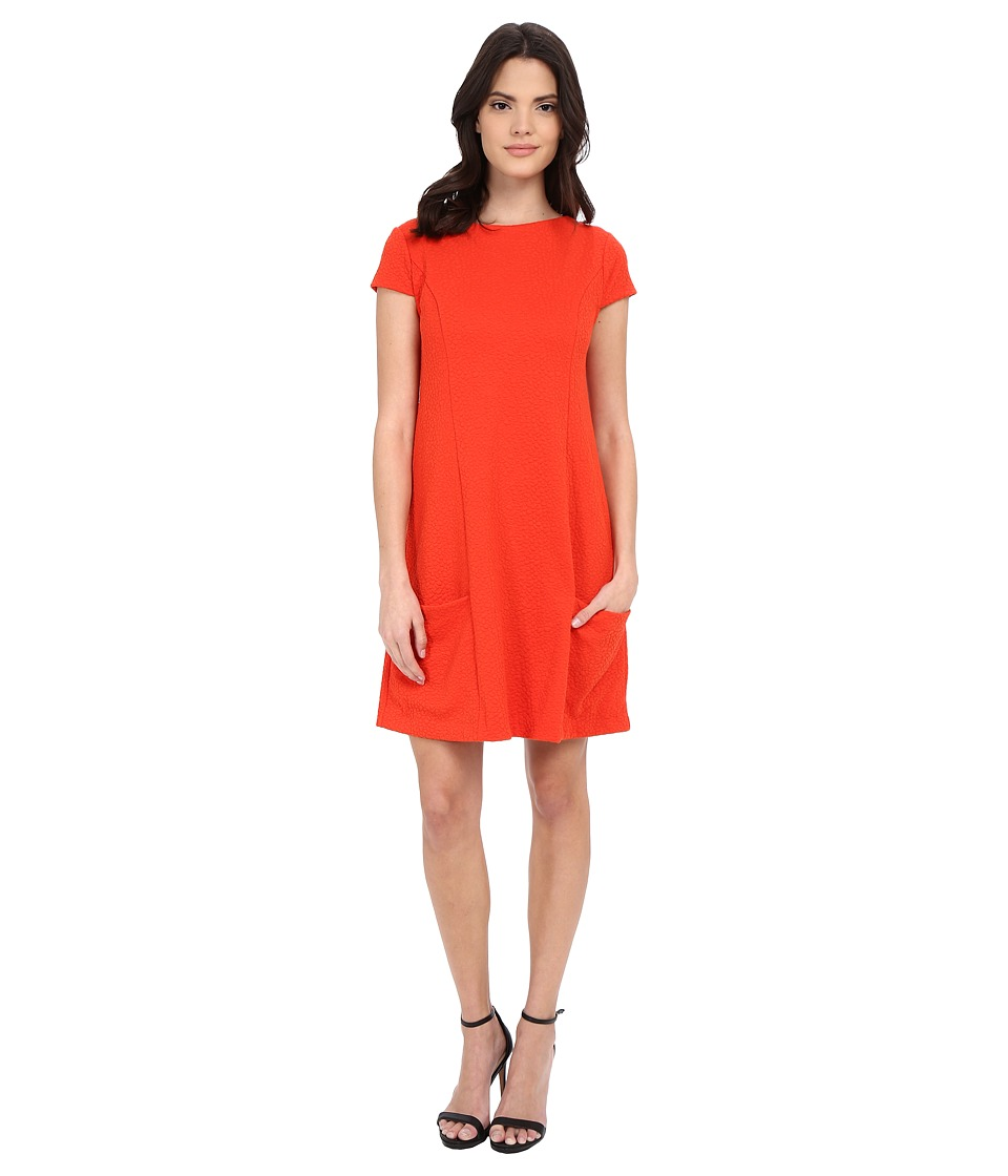 kensie - Textured Spot Dress KS1K7886 (Ember) Women's Dress