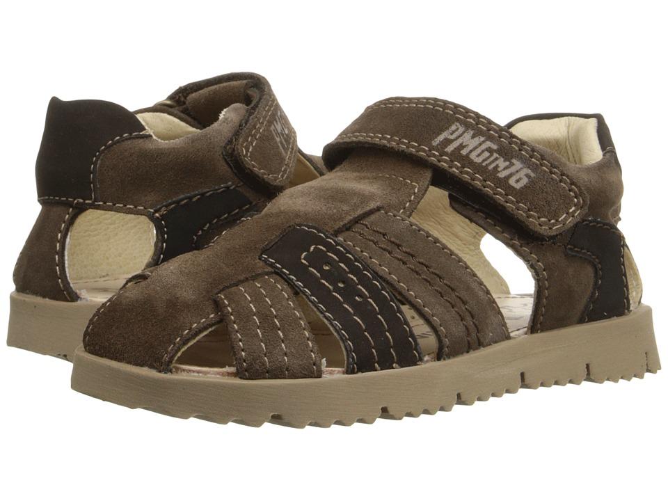 Primigi Kids - Hector (Toddler/Little Kid) (Brown) Boy's Shoes