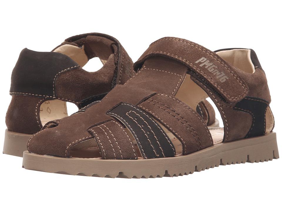 Primigi Kids - Hector (Little Kid) (Brown) Boy's Shoes