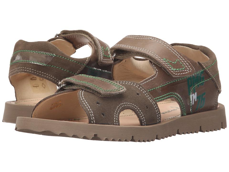 Primigi Kids - Flood (Little Kid) (Brown) Boys Shoes